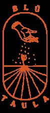 BLÜ-T_small-orange